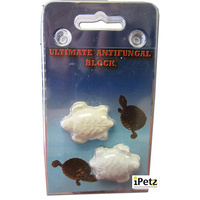 Anti Fungal Block for Reptiles URS