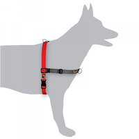 Black Dog Balance Harness Red Small