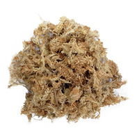 Dried Sphagnum Moss 10g