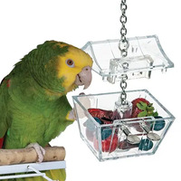 Creative Foraging Parrot's Treasure