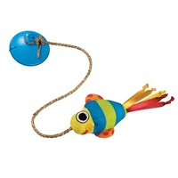 Dangling Fish Toy