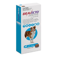 Bravecto Chew Large Dog 20-40kg (1 Pack)