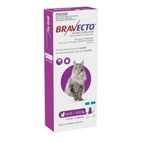 Bravecto Spot-On Large Cats 6.25-12kg (2 Pack)
