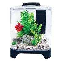 Betta Haven Acrylic Tank 7 Litres
