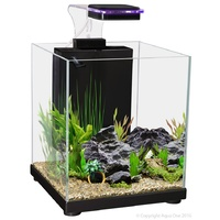 Betta Sanctuary Glass 10L Black
