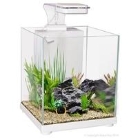 Fish Aquariums Siamese Fighting Fish Aquariums