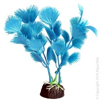 Bettascape Plant Fan Palm Blue