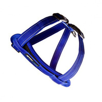 Ezy Dog Chest Plate Harness Blue 2XL