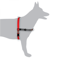 Black Dog Balance Harness Red