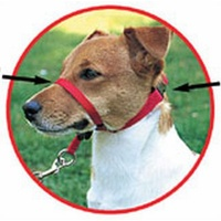 Gentle Leader Training Harnesses